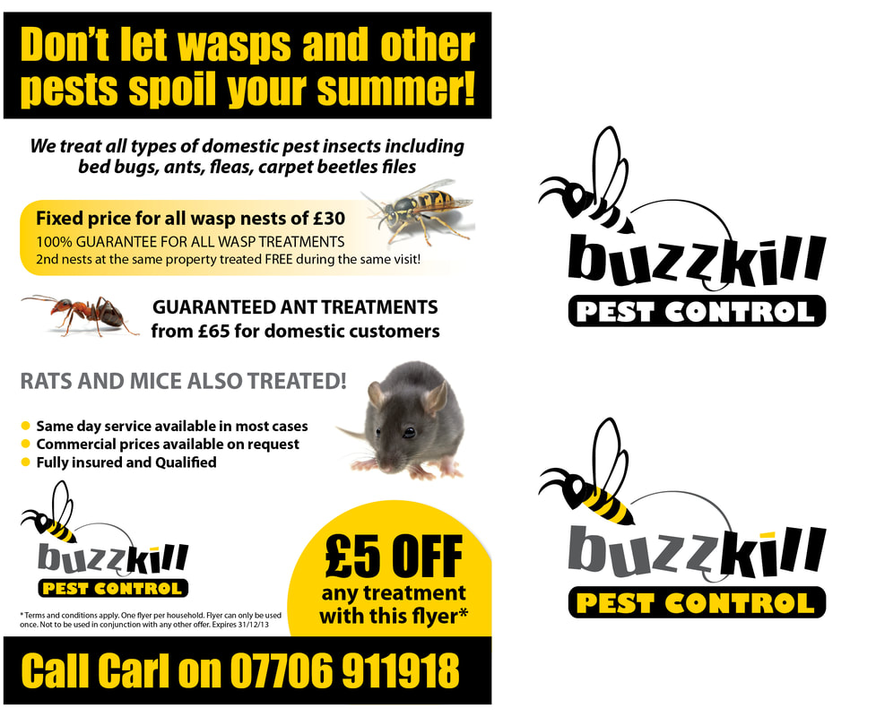 BuzzKIll Pest Control logo and flyer design